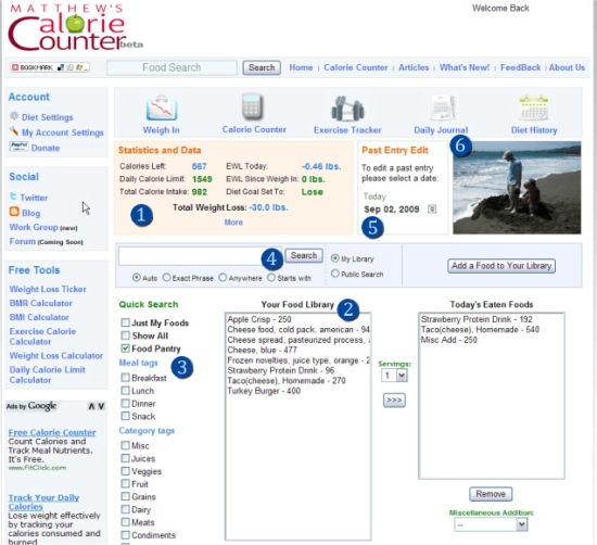 First Calorie Counter Website: 2008